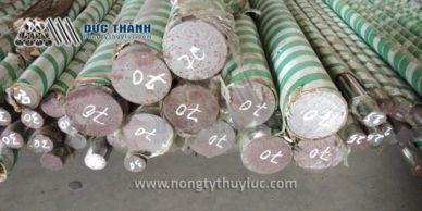 Ban Truc ty ben Xy Lanh thuy luc tai Mien Bac (4)
